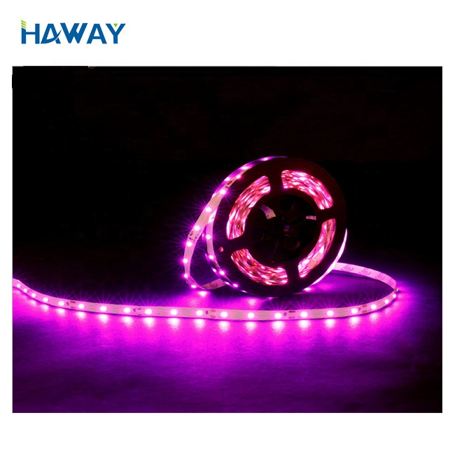 Purple color led strip waterproof  5m/roll led flex strip lights for room decoration atmosphere light