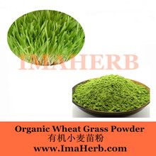 GMP Manufacture GMO Free bulk organic wheat grass juice powder