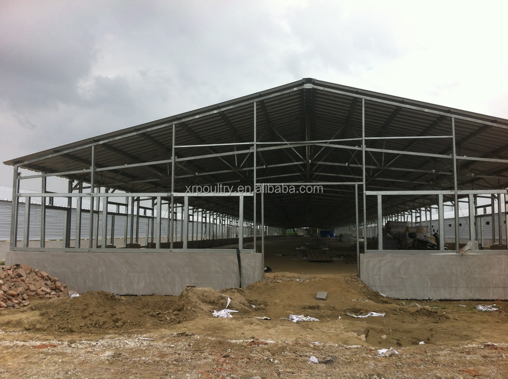 Building A Poultry House In Cameroon