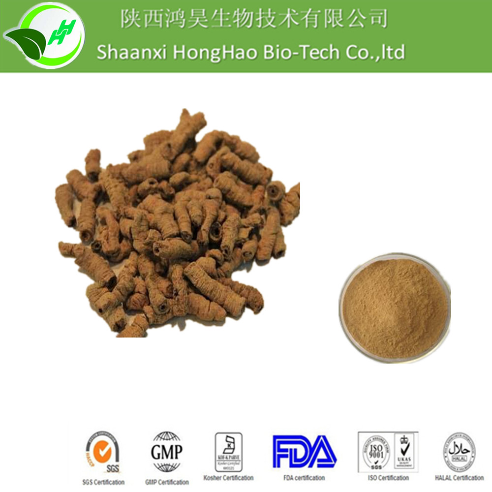 Sexual Enhancement Pure Natural Brown Fine Powder Root Part 10:1 morinda officinalis extract