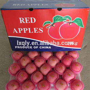 Top A fresh golden delicious apples fresh rose apple/red delicious apples