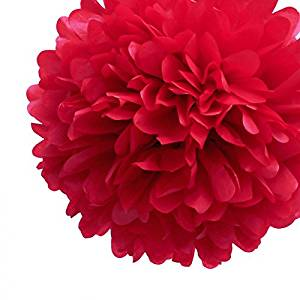 "Red Tissue Puff Flower Paper Pom Pom Party Decorations (10"", 3 Pack) - Christmas Holiday Party Supplies, Outdoor & Indoor Red Wedding Decor, Hanging Ceiling Tissue Party PomPom Balls"