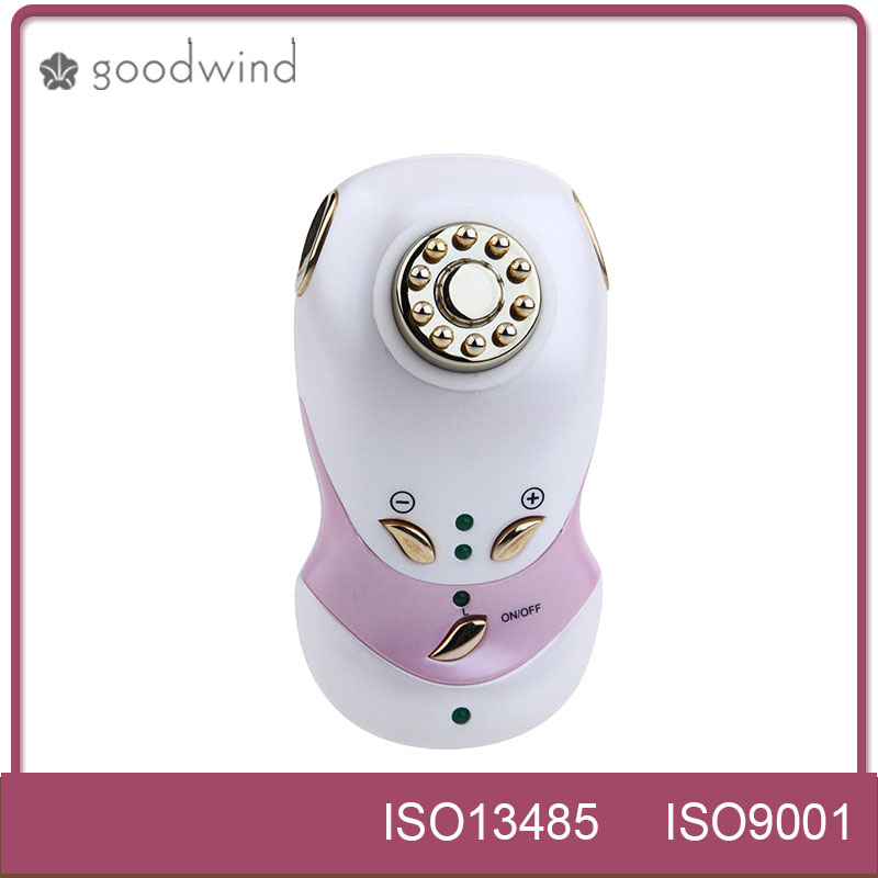 Home Use Beauty Equipment galvanic beauty unit icywhite