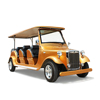 Resort National park 8 seats pickup guests electric sightseeing car