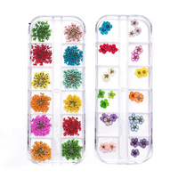 Factory wholesale nail flower 3d dry flowers art dried for sale