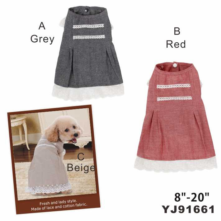 Lovely and charming clothes of dog