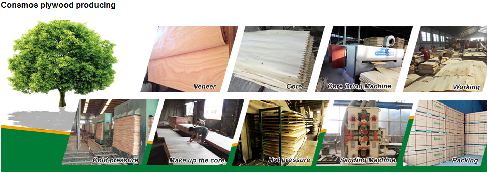 Linyi Consmos 18mm Construction playwood/film faced plywood,melamine WBP glue shuttering playwood for sale