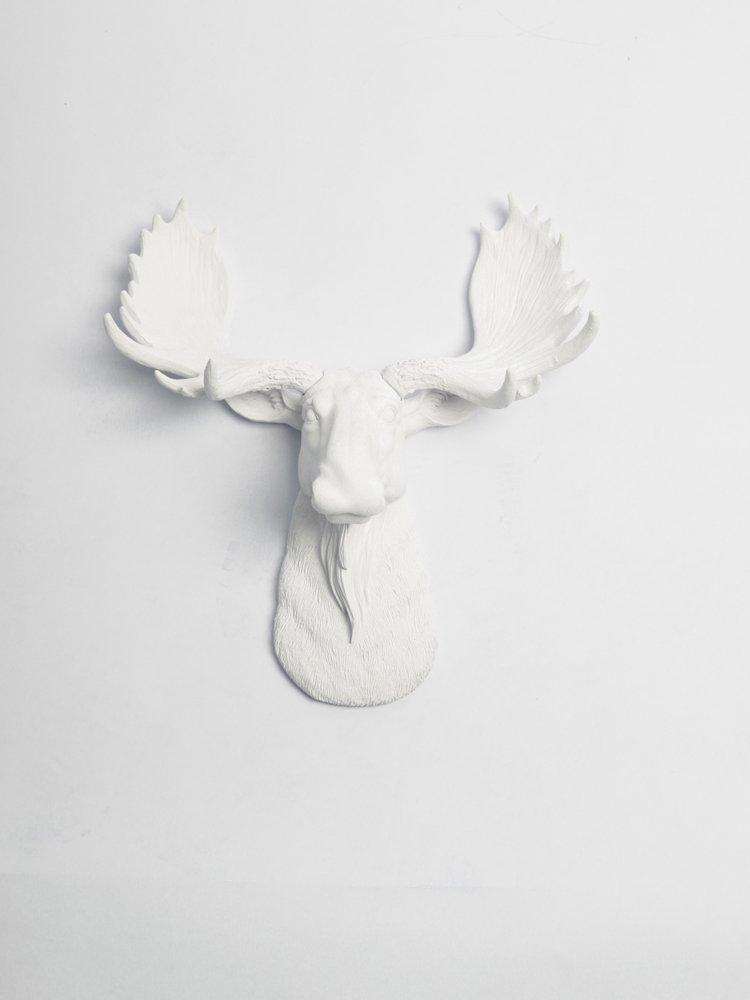White Moose Head Wall Mount - The Mini Edmonton | Miniature White Resin Moose Head | White Moose Head Wall Decor | Moose Wall Mount Sculpture | Faux Animal Head Wall Mounts By White Faux Taxidermy