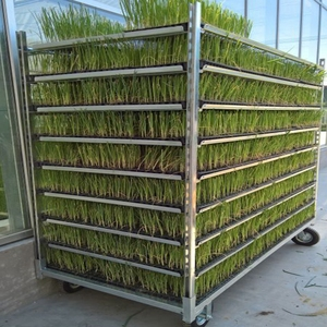 Metal expanded mesh plant nursery danish cart
