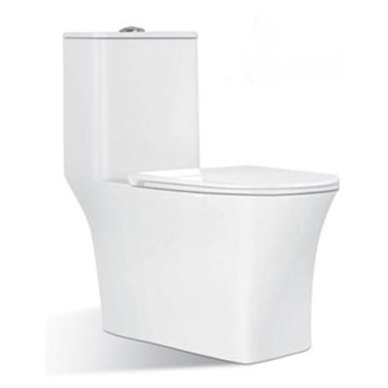 Sanitary ware bathroom western industrial back flush toilet