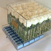 Professional 25 Roses Long Stem Transparent Flower Box With Drawer and Handle