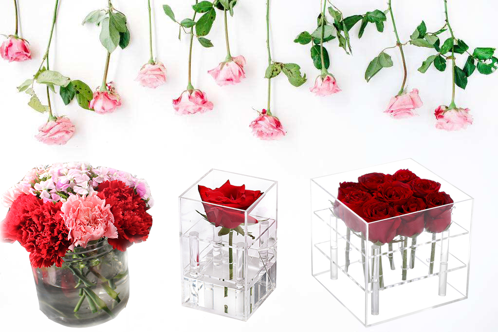 Acrylic Flower Display Box.jpg
