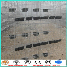 galvanized wire mesh panels Bird Used cage pour breeding pigeons