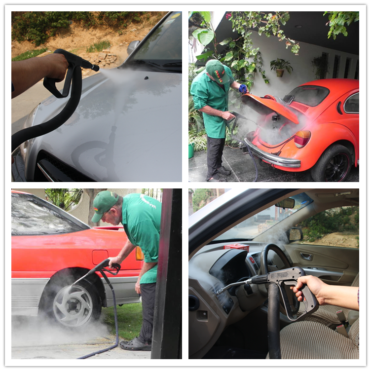 New Popular Eco Portable Hand Steam Car Wash Steam Bissell