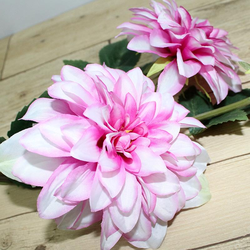 Оптовая продажа цветов георгин, разного цветами