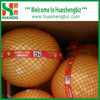 Premium Quality Fresh Pomelo from China
