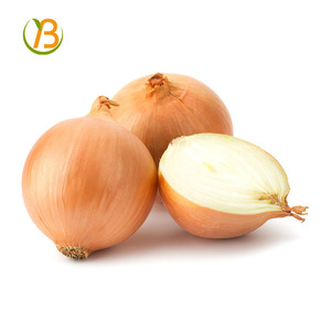 market price for red onion/lowest price fresh red onion/indian red onion