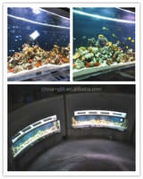 Buy Wall mount acrylic lucite small fish in China on Alibaba.com