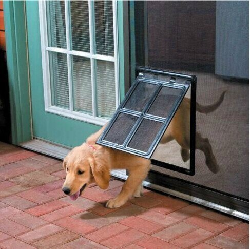 Cheap Dog Door For Screen Find Dog Door For Screen Deals On Line At