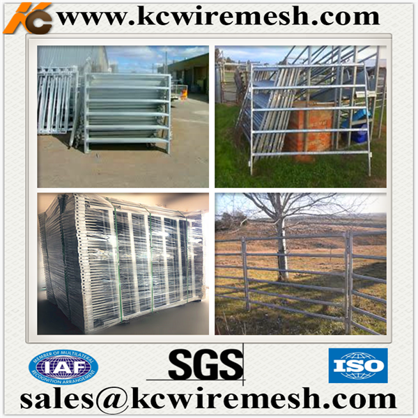 Factory!!!!!!! Kangchen metal livestock animal farm fence rails holding yards ranch fence panels