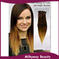 Milkyway wholesale two tone 1bblue ombre human european clip in milkyway wholesale 20quot 1b t 144 bright pumpkin gold ombre color straight indian pmusecretfo Image collections