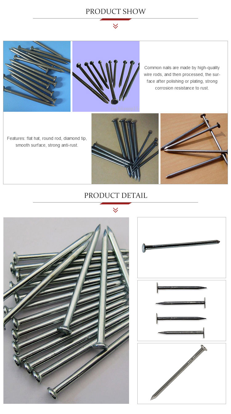 galvanized common iron nail used to make furniture