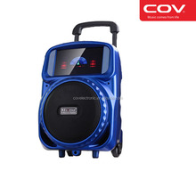 6.5 inch trolley bluetooth active speaker 12v with lcd screen mp5