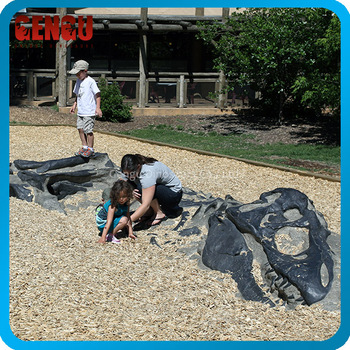 Attractive activity dig dinosaur fossil