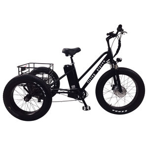 2018 Europe popular adult disc brake Electric tricycle with 6 speed(FP-ETRI18001)