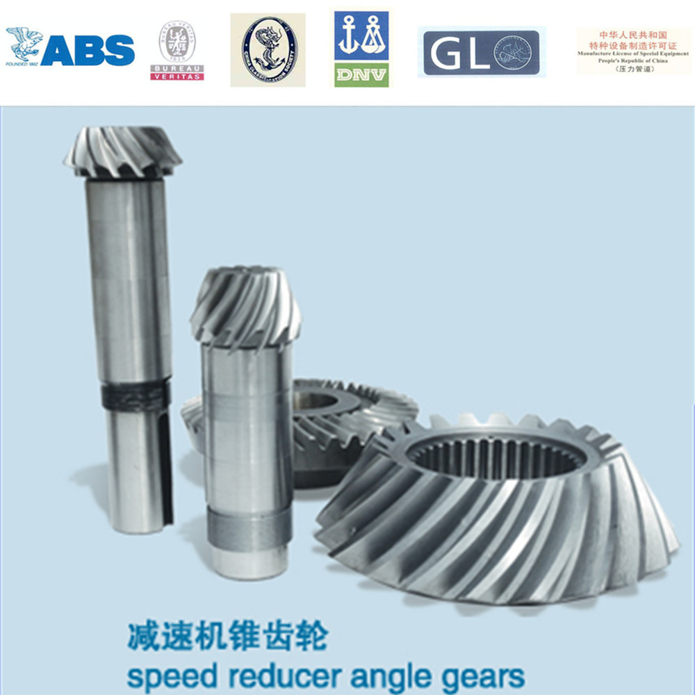 New design steel gear for paper shredder made in China