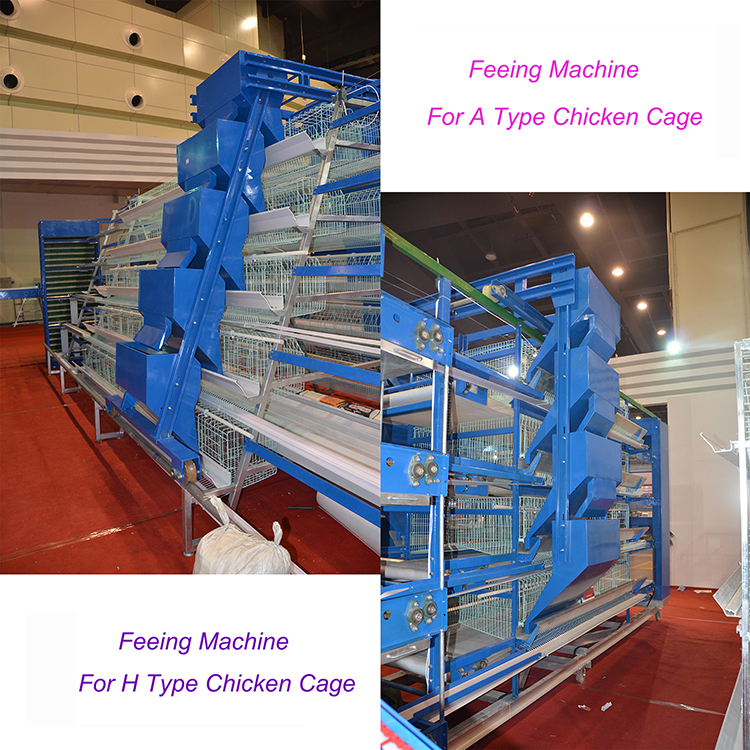 Competitive PRICE advantage automatic poultry chicken feed machine