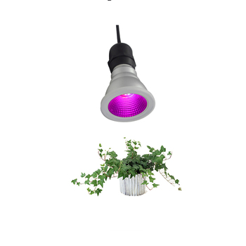Led spotlight E26 15w par38 waterproof led bulb growing systems full spectrum grow light  for outdoor plant use