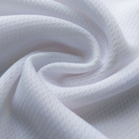 china manufacturer fabric textile pure white bird eye mesh jacquard polyester knit fabric