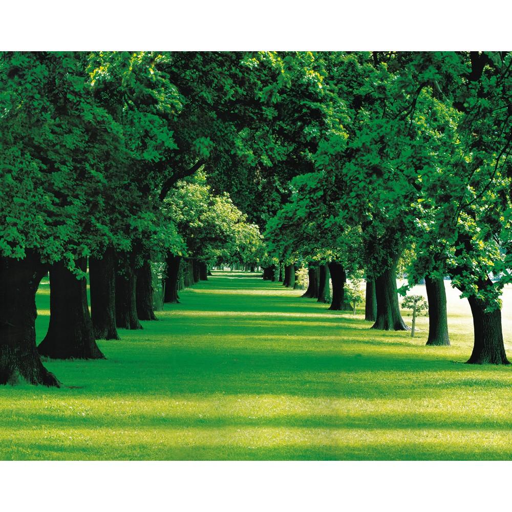 Venta Caliente 3d Verde Paisaje De Bosque De Papel Decoración De