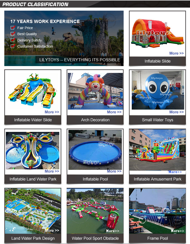 Best water slide inflatable dolphin Slide rental inflatable jumping castles inflatable water slide for sale