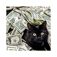 2019 hot sell popular home decor wall art handmade money cat 5d DIY rhinestone full drill Diamond painting kits