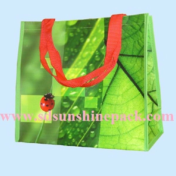Recycled Woven Polypropylene Shopping Bags - Buy Recycled Woven ...