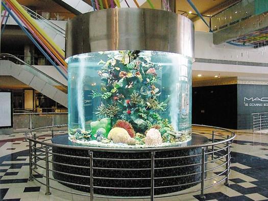 Xc Large Round Customized Acrylic Fish Aquarium Buy