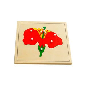 Hot Sale Cheap Price Geography Montessori Flower Wooden Puzzle
