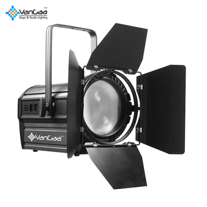 Guangdong Wholesale Led Photographi Video Light Studio Led Fresnel Spot Film Light 200w 300w 400w
