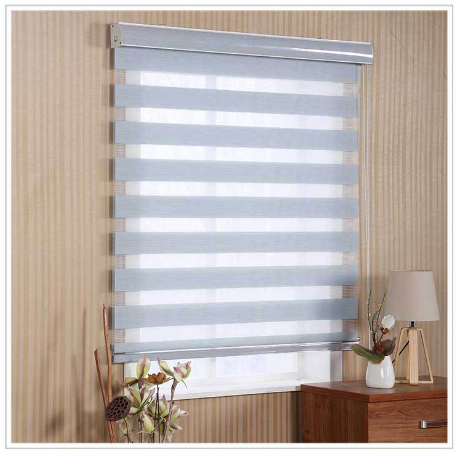 Motorized Day And Night Zebra Blinds window