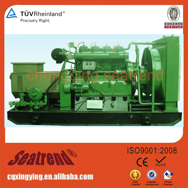 Green Power 50/60Hz 200kVa 160Kw Natural gas Power Gas Generators