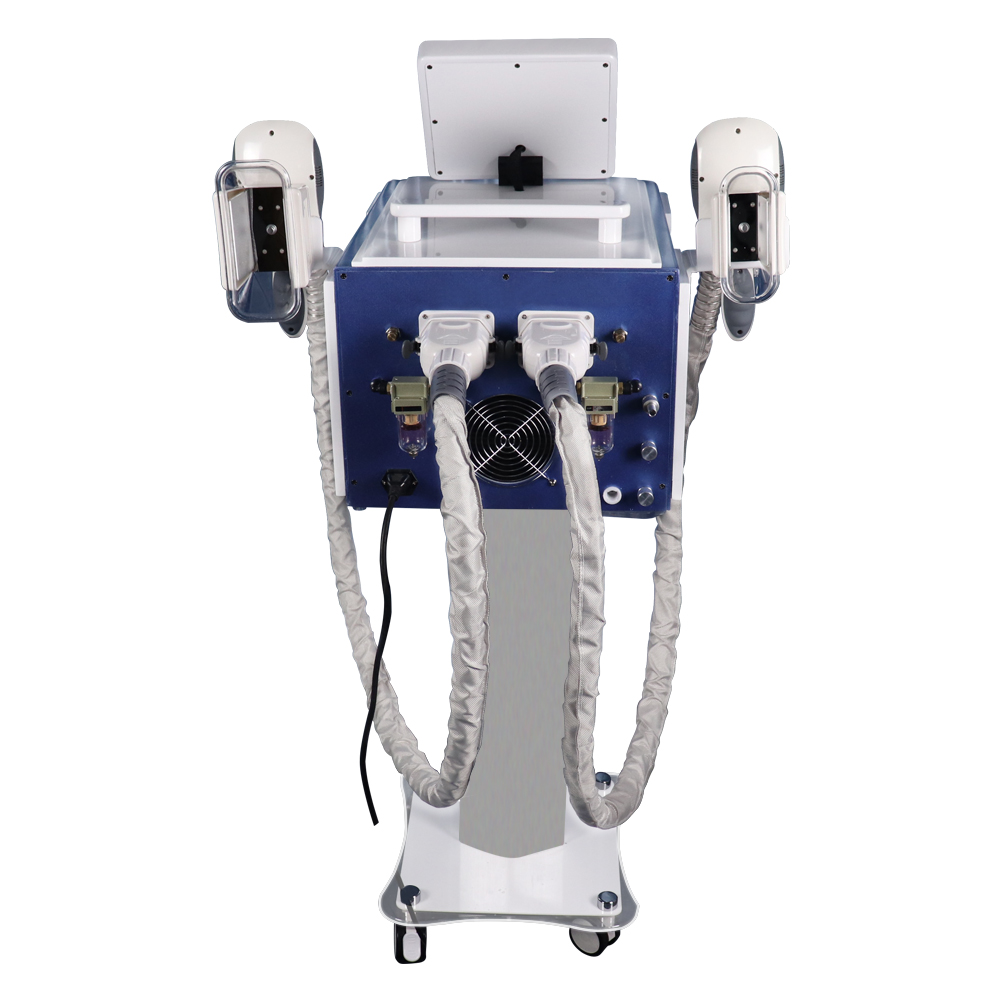 S20A Newest Cool Tech Criolipolysis Fat Freezing System Cryolipolysis Maschine With 2 Handles