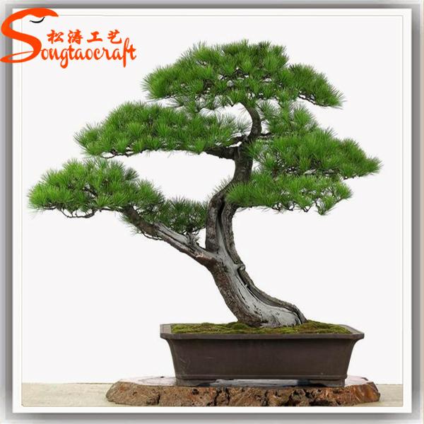 Baru Desain Pohon Pinus Buatan Jepang Pohon Bonsai Bonsai Menanam Penjualan Buy Bonsai Menanam Penjualan Japanese Bonsai Pohon Pohon Bonsai