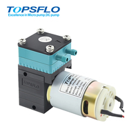 TF30A-B High Performance Micro Diaphragm Liquid Pump(Brush motor)