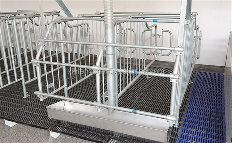 Livestock equipment galvanized pig gestation stall