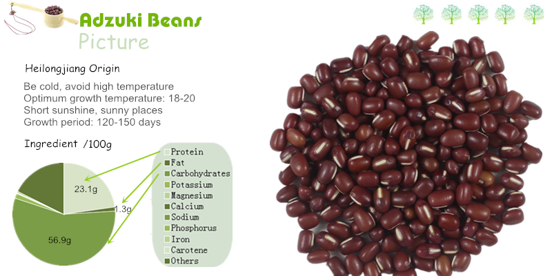 Chinese Small Red Beans/ Adzuki Beans Free Samples