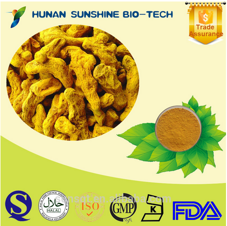 Whole Sale Anti-inflammation Tumeric Extract Antioxidation