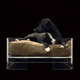 Clear Pet Sleeping Equipment Rectangle Acrylic Luxury Dog Bed