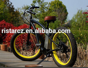 48V 500W Fashionable Sand Snow Fat Tire Electric Bike, Electric Mountain Bike RSEB505